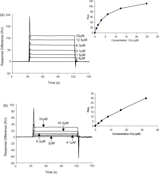 SPR analysis of the interaction of the sCrry reagents with rat C3b. Rat C3b was coupled covalently to the chip surface using the internal thioester bond and the interaction with sCrry (a) and sCrry (3SCRs) (b) was analysed. The affinity of the interaction was analysed by steady state kinetics (see inset).