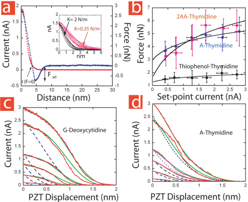 Determination of elastic-interaction parameters and prediction of the tunnel decay curves. a, Conducting AFM measurements of interaction force (blue points) and simultaneously acquired tunnel current (red points) for A-thymidine with a cantilever of spring constant 0.35 N/m. The inset shows how the extent of the current-distance curves is controlled by the stiffness of the cantilever (black curves, K=2 N/m, red curves, K=0.35 N/m). b, Adhesion force plotted vs. set-point current for a 2-amino-8-mercaptoadenine functionalized probe interacting with a thymidine monlayer (red points) and a 8-mercaptoadenine probe interacting with a thymidine monolayer (blue points). The black dots are control data obtained with thio-phenol functionalized probes. The solid lines are fits to Fad ∝ NHB ln(BISP + 1) + FNS (assuming all bonds are of equal strength) with B set to 2.83 nA−1. The coefficient of the log terms are 1.97±0.3 (AA-T) and 1.0±0.16 (A-T), so their ratio is 1.96 (+0.7, −0.5) a range that spans the expected value of 1.5 (NHB (2AA −T)/NHB (A − T) = 3/2). Representative STM decay curves (red) for an 8-mercaptoguanine probe interacting with a deoxycytidine monolayer (c) and an 8-mercaptoadenine probe interacting with a thymidine monolayer (d) for several set-points (each curve is the average of 26 raw data curves). The blue dashed-lines show how the current should decay from each set point if it follows the form of the 3nA data. The green lines are predicted by the elastic distortion model described in the text where the same two parameters are used to fit both the G-C and A-T data.
