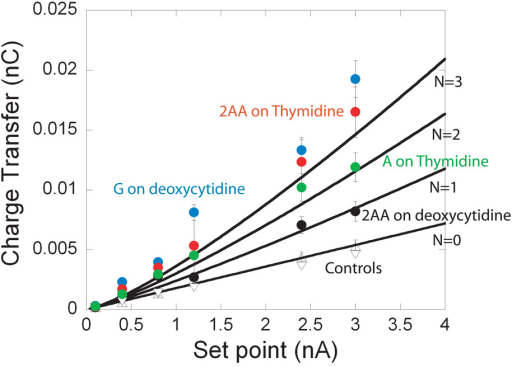 Charge transfer, obtained from integration of the tunnel current decay curves, plotted as a function of set-point current for different molecular junctions. The junctions plotted are non-hydrogen bonding controls (triangles), 2AA-deoxycytidine (black dots), A-thymidine (green dots), 2AA-Thymidine (red dots) and G-deoxycytidine (blue dots). The two sets of controls correspond to a bare probe and a thio-phenol functionalized probe interacting with a thymidine monolayer. The withdraw speed was 100 nm/s and the error bars are ±1sd. The solid lines are calculated according to equation 2 for NHB = 0, 1, 2 and 3 using the values of B and CK1/K2 obtained from fits to the G-C data in Figure 4c.