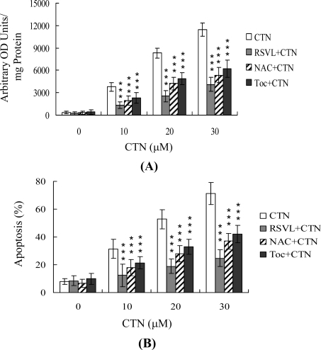 Resveratrol attenuates CTN-induced oxidative stress.Hep G2 cells were preloaded with 20 μM DCF-DA for 1 h. Cells were left untreated or treated with 20 μM resveratrol (RSVL), 400 μM N-acetyl cysteine (NAC), or 300 μM α-tocopherol (Toc) as indicated for 1 h, followed by incubation of 10–30 μM CTN for another 24 h. (A) ROS generation was assayed by DCF-DA, and expressed as absorbance/mg of protein. (B) Apoptosis was detected with the ELISA kit. Values are presented as means ± SD of eight determinations. ***P<0.001 versus value of the group treated with CTN.