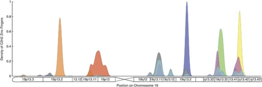 Distribution of similar C2H2 zinc-finger domains on chromosome 19. Each zinc-finger sequence was assigned to one of eight different clusters based on a hierarchical clustering analysis (see 'Analysis of C2H2 motifs in Materials and Methods'). Each of these clusters is represented by a different color: orange, red, violet, green, yellow, gray, light blue and magenta. We used the sequence divergence between pairs of zinc-fingers as the similarity metric in this analysis. The density associated with each cluster was normalized such that the total mass is one, and it is represented with a particular color in the figure. We found that five clusters of zinc-fingers are highly localized on particular regions of chromosome 19 (orange, red, violet, green and yellow). This supports the hypothesis that local duplications generated by unequal crossover events have been responsible for the expansion of clusters of C2H2 zinc-fingers