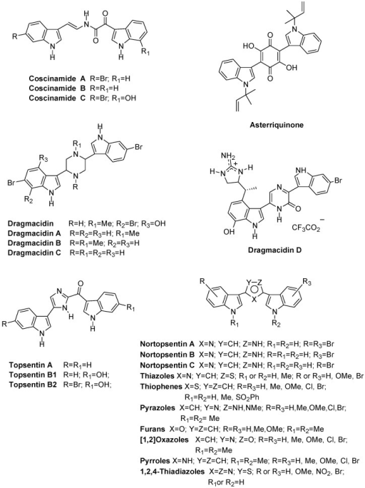 Bis-indolyl alkaloids and analogues.
