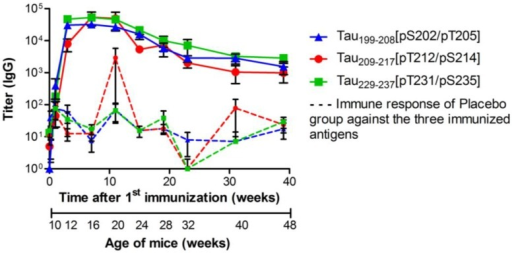 Specific total IgG titers of P301S mice immunized with Tau199–208[pS202/pT205] (blue triangle , n = 39), Tau209-217[pT212/pS214] (red circle , n = 39) or Tau229–237[pT231/pS235] (green square , n = 36). Animals were immunized and boosted twice, two and six weeks after. Sera were collected one week before (background) and again 1, 3, 7, 11, 15, 19, 23, 31, and 39 weeks after the first vaccination (day 0). Solid lines represent the IgG titers of vaccinated mice; dashed lines represent the unspecific immune response against the three antigens, which was detected in sera of placebo treated mice (n = 36). Shown are geometric means of IgG titers with the standard error of the mean (SEM).