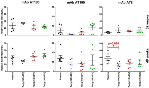 Normalized phospho-tau contents in brain homogenates of placebo-treated P301S mice (n = 5–6, ♦) and P301S mice immunized with Tau199–208[pS202/pT205] (n = 3‑5, ), Tau209–217[pT212/pS214] (n = 5–6, ), and Tau229–237[pT231/pS235] (n = 5–6, ) at 32 weeks (upper row) and 48 weeks (lower row) of age obtained from immunoblots. Shown are the relative ratios of phospho-tau (mAbs AT8, AT100, and AT180) to total tau (mAb Tau5) in percent arranged according to the temporal occurrence of the phospho-tau epitopes (pT231/pS235—early, pT212/pS214—intermediate, pS202/pT205—late).