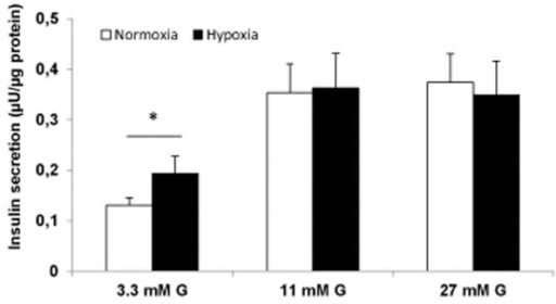 Previous hypoxia (8 hours) increased basal but not stimulated insulin secretion in INS-1 832/13 cells.Insulin release (final 60–90 min incubations) with 3.3, 11 and 27 mM glucose (G). Protein content was estimated from a mean of three measurements in each experiment. Data are mean ± SEM, n = 5, *P < 0.05.