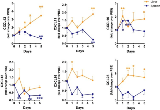 Sterne infection leads to changes in chemokine production in the liver and spleen. A/J mice (n = 43) were infected with 109 spores of B. anthracis Sterne. Total RNA was isolated from mice (day 1, n = 10; day 2, n = 10, day 3, n = 10; day 5 n = 13) at each indicated time point, and transcripts of CXCL10, CXCL11, CXCL12, CXCL13, CXCL16, and CCL25 were evaluated by qRT-PCR, as mentioned in the Experimental Section using gene specific primers. Data are shown as mean ± SEM. *p < 0.05, ** <0.01, ***p < 0.001 compared with PBS-treated or day 0 mice.