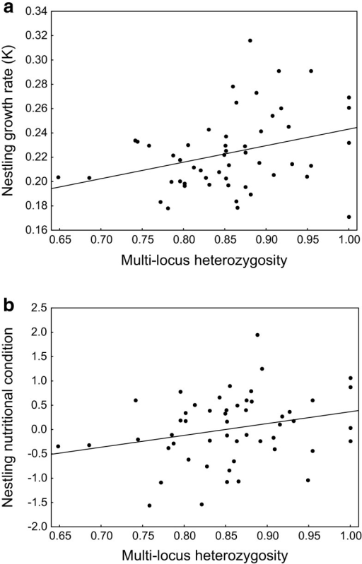 Between-nest effects (mean values for each nest) of multi-locus heterozygosity on growth rate (a) and nutritional condition (b) of great cormorant nestlings. The lines indicate fitted regressions