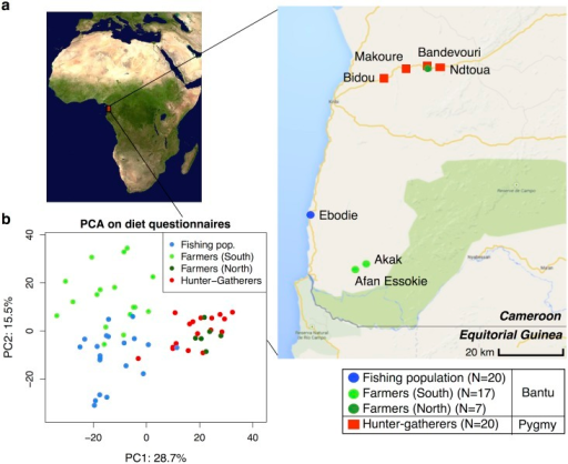 (a) Map showing the geographic locations of the villages sampled in Southwest Cameroon, the number of samples (N) collected for each subsistence group (the fishing population, farmers from the South, farmers from the North, and hunter-gatherers), and their genetic ancestry (Bantu or Pygmy).(b) Principle Components Analysis based on dietary questionnaires for all 64 individuals. The first two principal components (PC1 and PC2) are shown, with the amount of variation explained reported for each axis. Image of Africa is courtesy of NASA/JPL-Caltech.