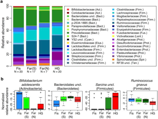 Relationship between subsistence modes and fecal microbiome composition.(a) Summary of the relative abundance of taxa (occurring at > = 0.1% in at least 4 individuals) for individuals across subsistence. Taxa are colored by phylum (Actinobacteria (Act.) = red, Bacteroidetes (Bact.) = green, Cyanobacteria (Cyan.) = black, Elusimicrobia (Elus.) = gold, Firmicutes (Firm.) = blue, Fusobacteria (Fus.) = pink, Lentisphaerae (Lent.) = yellow, Proteobacteria (Prot.) = purple, Spirochaetes (Spir.) = orange, and Tenericutes (Ten.) = gray). The number of individuals (N) in each population is indicated below the bars. (b) Relative abundance of four taxa significantly associated with subsistence based on an ANOVA, q < 0.05. Fis = Fishing population; Far(S) = Farmers from the South; Far(N) = Farmers from the North; HG = Hunter-gatherers.