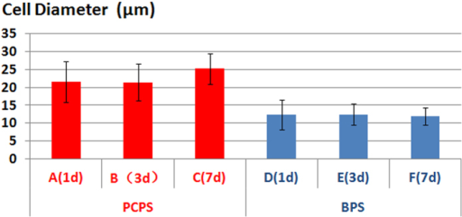 Average diameter of cells after seeding and culturing on the PCPS and BPS surfaces.(A) PCPS (1 day), (B) PCPS (3 days), (C) PCPS (7 days), (D) BPS (1 day), (E) BPS (3 days), and (F) BPS (7 days).
