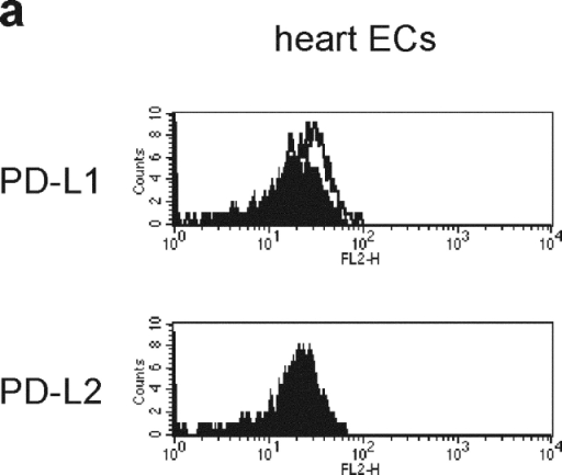 PD-L1 expression on vascular endothelium. (a) ECs were freshly isolated from murine heart and stained with anti-PD-L1 or anti-PD-L2 (open curves). The filled curves represent control IgG. (b-g) Biotinylated F(ab′)2 of anti-PD-L1 (b-g1) or control IgG (b-g2) was intravenously injected into mice and organs were harvested 1 h later. Sections were stained with streptavidin-FITC (green) and counterstained with phalloidin (red). (b) Eye, (c) submandibular gland, (d) lung, (e) heart, (f) liver, (g) kidney. Ch, choroid; CV, central vein; Gl, glomerulus; Re, retina. The arrows represent vascular endothelial cells. Original magnification, ×40.