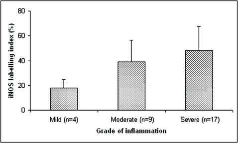 iNOS labeling index in reduced epithelium and stratified squamous epithelium of dental follicles. Values were expressed as means ± S.D. *: P<.05 when compared to mild inflammation.