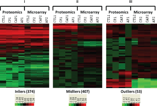 Identification and comparison of transcriptomic and proteomic landscapes. Comparative expression levels from the overlap of microarray and proteomic analysis of MS lesions. 834 MS UniProt IDs were jointly detected in both microarray and mass spectrometry analysis. RNA and protein expression levels of targets were measured by fluorescent intensity and spectral counts, respectively. Global transcriptomic and proteomic landscapes were compared for the 834 overlapping targets using logs (base 10) of mean relative abundance normalized to a mean of zero. Those proteins with absolute log difference <1 for each of the four lesion types (control [CTL], AP, CAP, and CP) were called inliers (i), <2 midliers (ii), and >2 outliers (iii). Note that an absolute log difference of 1 denotes a one order of magnitude difference in relative abundance.