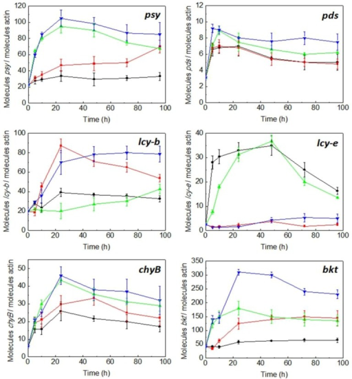 Effect of irradiance and nitrogen availability on the mRNA levels of the phytoene synthase (psy), phytoene desaturase (pds), lycopene β-cyclase (lcy-b), lycopene ε-cyclase (lcy-e), carotene β-hydroxylase (chyB) and β-carotene oxygenase (bkt) genes in C. zofingiensis. Culture conditions: low irradiance (20 µmol photons m−2 s−1) and nitrate replete (black line); low irradiance and nitrate deprivation (red line); high irradiance (300 µmol photons m−2 s−1) and nitrate replete (green line); high irradiance and nitrate deprivation (blue line). Error bars indicate the standard deviations of four independent measurements.