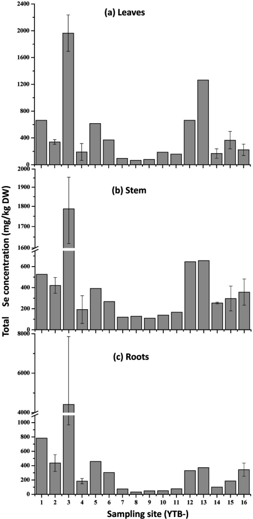 Concentrations of total Se in different tissues of Cardamine hupingshanesis (Brassicaceae). Top: leaves; Middle: stem; Bottom: roots. The error bar was calculated on triplicate samples.