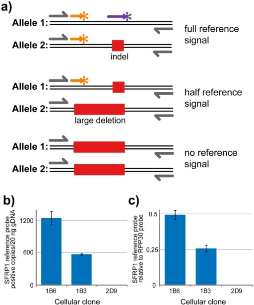 Genomic copy number alterations can be detected in ddPCR NHEJ detection assay.(a) Conceptual diagram displaying the expected changes in reference signal strength dependent on large deletions encompassing the reference probe binding site. (b) SFRP1 reference signal strength (copies/uL) in three C8161 SFRP1-edited cellular clones. (c) Copy number analysis of SFRP1 in three SFRP1-edited cellular clones normalized against RPP30. Error bars represent standard deviation (n = 3).