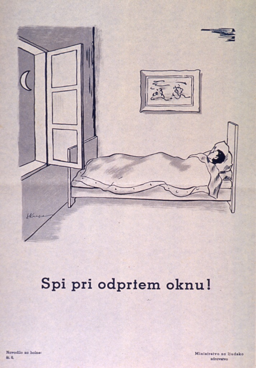 <p>Off-white poster with teal blue lettering.  Visual image is an illustration of a person lying in bed.  The window in the room is open.  Title below illustration.  Series statement in lower left corner.  Publisher information in lower right corner.</p>
