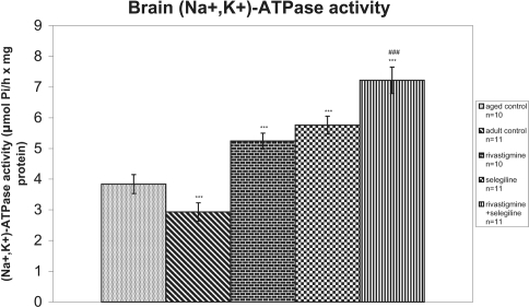 Effects of rivastigmine, selegiline, and (rivastigmine + selegiline) on brain (Na+, K+)-ATPase activity. (Na+, K+)-ATPase activities were determined in each homogenized rat whole brain. Values of the groups of aged control rats and of rivastigmine indicate the mean ± standard error (SE) of ten independent experiments (ten rats). Values of the groups of adult control rats, of selegiline and of rivastigmine + selegiline indicate the mean ± SE of eleven independent experiments (eleven rats). The average value of each experiment arises from three determinations.Notes: ***P < 0.001 compared with aged control group; ###P < 0.001 compared with selegiline-treated group.