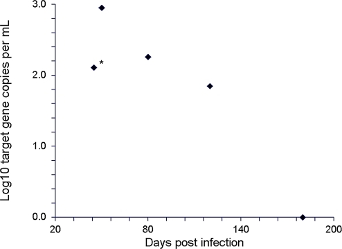DNA copies per mL of pooled mouse plasma (y-axis, four mice per datum point) in mice infected intraperitoneally with 100 cercariae of S. mansoni.After completion of parasite maturation on day 42, mice were treated orally with praziquantel on day 45 (120 mg per kg). At the indicated times (x-axis), four mice were sacrificed, their blood pooled, and 1 mL of pooled plasma was tested as described in the Materials and Methods section for cell-free Schistosoma DNA. The untreated group is marked with an asterisk (*).