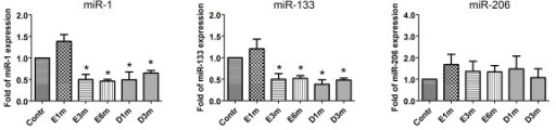 Expression of muscle-specific miRNAs using quantitative real-time PCR. After entrapment, the expression of miR-1 and miR-133 was significantly decreased to ~50% of those observed in the sham control group at 3 and 6 months after entrapment. After decompression, miR-1 and miR-133a levels were unchanged and sustained a significant decrease at 1 and 3 months later, respectively. There were no statistical differences in the expression of miR-206 at the indicated time points after nerve entrapment and after decompression. Bars represent means ± standard error of 6 independent experiments; *, P < 0.05 vs. sham control.