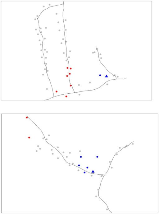 Local clustering for house resident meals for Lao Bao (top) and Pai Lom (bottom) during the rainy season of 2002 with neighbors defined at 40 m and significance evaluated using 9,999 randomizations.Red and blue indicate the presence of hot and cold spots, respectively. Triangle indicates the local market. Black lines represent roads.