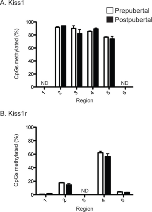 Details of methylation across entire promoter regions. A. Bar graph showing the percentage of CpG residues within each of the 6 regions across the Kiss1 promoter. Note that the promoter as a whole is mostly methylated irrespective of physiological state. B. Bar graphs showing the percentage of CpG residues within each of the 5 regions spanning the Kiss1r promoter. Note that the promoter as a whole is mostly unmethylated irrespective of physiological state. ND, no data, indicating that insufficient sequencing coverage was obtained for these three regions. This mainly because of the high poly-T content that arises as a consequence of bisulfite conversion. Error bars indicate standard error of the mean.