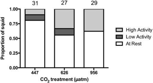 Effect of elevated CO2 on resting frequency of squid.Proportion of squid that were at rest (zero line crosses), displayed low activity levels (1–25 line crosses), and high activity levels (more than 25 line crosses) in behavioural trials for individuals exposed to control (447 µatm), moderate (626 µatm), or high (956 µatm) CO2. Sample sizes are displayed above the bars.