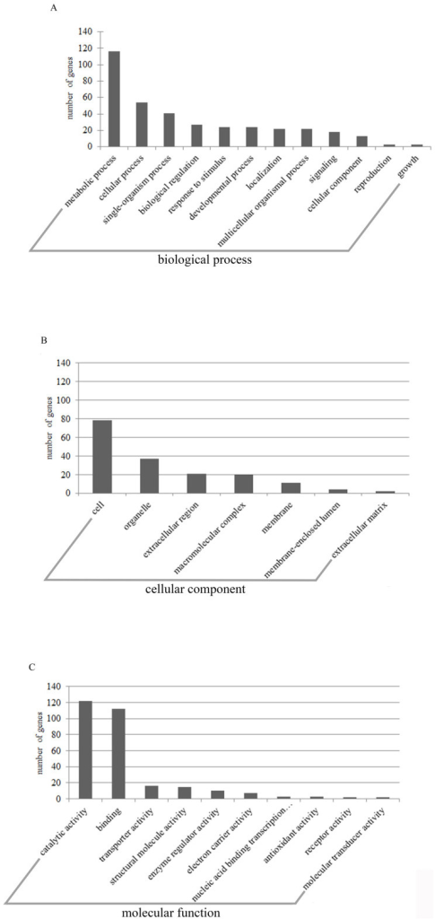 Diversity of ontological categories of differentially expressedgenes.(A): Ontological categories in biological process. (B): Ontologicalcategories in cell component. (C): Ontological categories in molecularfunction.