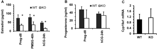 Kdm3b is required for maintaining normal levels of 17β-estradiol. (A). The concentrations of 17β-estradiol in the serum samples prepared from WT and Kdm3bKO (KO) mice on day 8 of pregnancy (n=6), at 40 hours after PMSG injection (n=6), and at 24 hours after hCG injection (n=3). (B). The concentrations of progesterone in the serum samples of WT and KO mice on day 8 pregnancy (n=6) and at 24 hours after hCG injection (n=3). (C). The relative expression levels of Cyp19a1 mRNA in the ovaries of untreated WT and KO mice (n=5).
