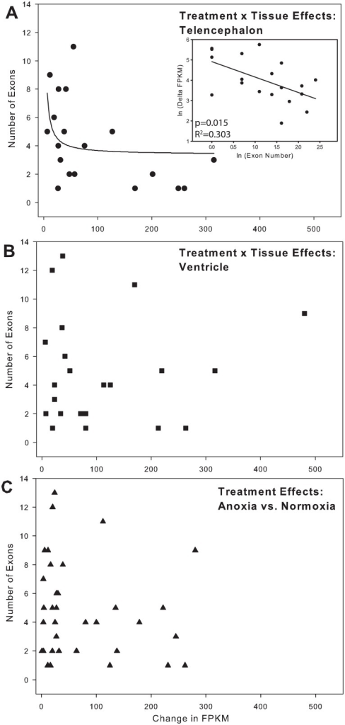 Exon number as a predictor of increased gene abundance.(A) In telencephalon, the number of exons in a gene was a significant predictor of the increase in the expression level of a gene. The inset shows that the ln (delta FPKM) decreases as the ln (Exon number) increases. (B) In ventricle alone and (C) when values from both tissue are pooled (treatment effect), ln (Exon number) is no longer a predictor of the ln (delta FPKM). Note: although sequence length is the independent variable, it is shown on the x-axis to be consistent with reference [33]. The regression analyses (see inset in A, not shown for B and C) were conducted with ln (Exon number) as the independent variable. All significantly upregulated genes were included, regardless of fold-change.