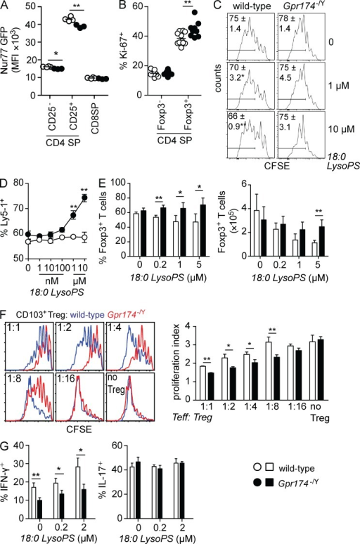 CD4+ T cells show diminished Nur77 levels and enhanced proliferation in Gpr174−/Y mice. (A) Flow cytometry analysis of the mean fluorescence intensity (MFI) of Nur77-GFP expression in thymocytes from 6-wk-old wild-type and Gpr174−/Y Nur77-GFP+ littermate male mice. Each dot represents an individual mouse; n = 4. (B) Intracellular levels of Ki-67 expression in the indicated thymocyte populations from 6-wk-old wild-type and Gpr174−/Y littermate male mice were determined using flow cytometry. The percentage of Ki-67+ cells among Foxp3+ T reg and Foxp3− CD4 SP thymocytes is shown; n = 9 or 10. (A and B) Horizontal lines indicate the mean. (C) The effects of LysoPS on T cell proliferation under neutral conditions. CFSE-labeled LN cells from wild-type or Gpr174−/Y mice were cultured in round-bottom plates with 0.25 µg/ml soluble anti-CD3 and the indicated amounts of LysoPS. Cell proliferation was assessed 3 d later based on CFSE dilution that was measured by flow cytometry; live CD4+TCR-β+ T cells are shown. Gates indicate the percentage of cells that divided at least three times, and means ± SD are shown; n = 4. (D and E) Direct effects of GPR174 and its ligand LysoPS on proliferation and Foxp3 induction. In flat 96-well plates coated with anti-CD3 and anti-CD28 mAbs (both 2 µg/ml), a mixture of either wild-type (Ly5-1+) or Gpr174−/Y (Ly5-1+) with congenic wild-type (Ly5-2+) naive CD4+ T cells (D) or either wild-type or Gpr174−/Y naive CD4+ T cells (E) were added. Cells were cultured in the presence of 200 U/ml IL-2 (D) or 1 ng/ml TGF-β (E) and the indicated concentrations of 18:0 LysoPS for 4 d. Expression of Ly5-1 and Ly5-2 (D) or Foxp3 (E) was measured by flow cytometry; n = 4; error bars indicate SD. Counts were quantified based on the number of events acquired on a flow cytometer run for 60 s per sample (E). Cells used in E were isolated from mixed bone marrow chimeric mice to minimize extrinsic effects on naive T cells. (F) In an in vitro T reg cell suppressor assay, CD4+CD25+CD45RBhighCD103− T reg cells were sorted from spleens of wild-type and Gpr174−/Y littermate mice. T reg cells were cultured at the indicated ratios with 105 CFSE-labeled naive CD45.1+CD4+ T cells and 2 × 104 CD11c-enriched DCs in the presence of 0.5 µg/ml soluble anti-CD3ε mAb for 3 d. The proliferation index of CFSE-labeled cells was determined in triplicate cultures, and representative CFSE flow cytometry plots are shown. (G) A total of 2 × 105 naive CD4+ T cells from CD45.2+ wild-type or Gpr174−/Y littermate mice were cultured along with an equivalent number of cells from CD45.1+ wild-type mice under Th1 or Th17 polarizing conditions for 5 d. After restimulation with PMA and ionomycin, the percentage of CD45.2+ cells that secreted IFN-γ or IL-17 was determined by intracellular cytokine staining and flow cytometry analysis. (F and G) Error bars show SD. Data were evaluated by unpaired Student's t test: *, P < 0.05; **, P < 0.01. All data are representative of three or more independent experiments.