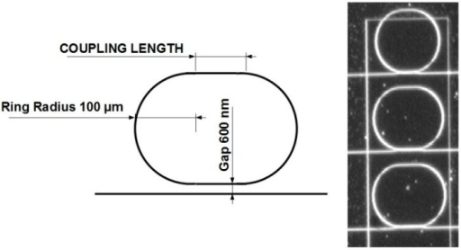 Sketch and microscope picture of the ring resonators sample. In the microscope image, we can clearly observe the etching windows around the resonators that allow the functionalization of the sensors.