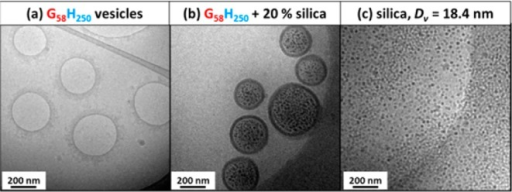 Cryo-TEM images obtainedfor (a) empty G58H250 diblock copolymer vesicles,(b) G58H250 diblockcopolymer vesicles prepared in the presence of 20% w/w silica nanoparticles(after centrifugation to remove excess silica nanoparticles), and(c) the silica nanoparticles alone, for which the SAXS-derived vesiclediameter (Dv) is 18.4 nm.