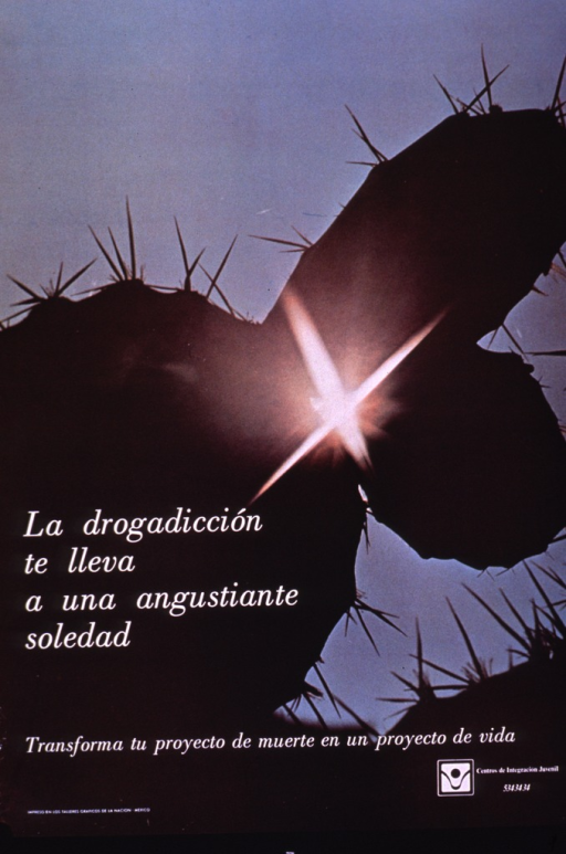 <p>Multicolor poster with white lettering.  Visual image is a color photo reproduction featuring several spiny cactus leaves set against a cloudless sky; light reflects off one of the leaves and forms an &quot;x&quot;.  Title and caption superimposed on photo in lower portion of poster.  Caption deals with transforming a project of death into a project of life.  Publisher information in lower right corner.</p>