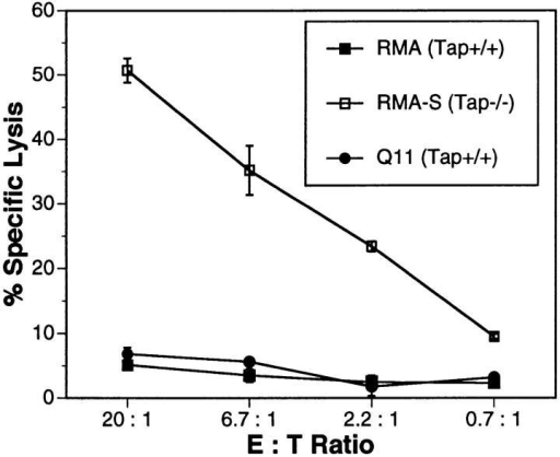 Lysis of syngeneic Tap+/+ and Tap−/− tumor cells by in vitro  generated NK cells. Target cells were class I+ RMA (Tap+/+) and Q11  (Tap+/+) and class Ilo RMA-S (Tap−/−). The data are representative of  three separate experiments.