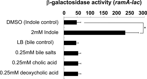 Effect of indole and bile on ramA transcription. β-Galactosidase levels were assayed in the WT strain carrying the ramA reporter plasmid (pNNramA) (NES84). Cells were grown in LB medium supplemented with 2 mm indole, 0.25 mm cholic acid, 0.25 mm deoxycholic acid, or 0.25 mm bile salts. The data correspond to mean values from three independent experiments. Bars correspond to the standard deviation. Student's t test; *, p < 0.01 versus control.