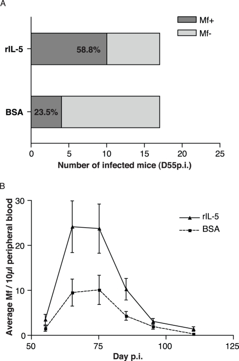 Early eosinophilia enhances L. sigmodontis reproductive output.(A) When co-inoculated with eosinophilia-inducing rIL-5 and L3 parasites, BALB/c mice became microfilaraemic sooner than in control infections as suggested by the proportion of mice presenting blood circulating microfilariae by D55 p.i. (p = 0.08, Fisher's exact test, n = 17, analysis restricted to mice that became microfilaraemic). (B) Early rIL-5-induced eosinophilia resulted in increased microfilaraemia throughout patency (effect of treatment on microfilaraemia p = 0.0001, negative binomial glm; n = 12, data points represent means ± s.e.m.) and a marginally earlier peak in microfilaraemia (occurring on day 68.5±1 and 72.8±2 in treated mice and controls, respectively, p = 0.09).