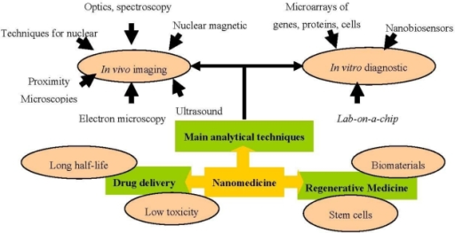 Nanomedicine application areas.