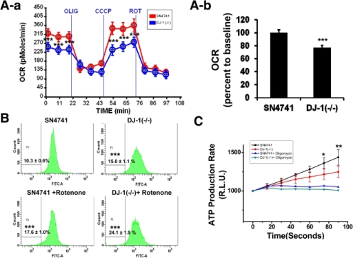DJ-1 gene deletion decreases mitochondrial respiratory chain function in dopaminergic neuronal cells.(A-a, b): The O2 consumption rate (OCR) was measured in SN4741 cells and DJ-1  cells in at least three independent experiments by using an XF analyzer. For validation of the measured O2 consumption rate, we used the 2 µg/ml oligomycin, 5 µM CCCP, and 1 µM rotenone sequentially. Each time point represents the mean (±SD), and compensated OCR data without background levels are shown in (b) with bar graphs. ***, p<0.001 (B): Mitochondrial membrane potential was investigated by rhodamine 123 staining and quantified by FACS analysis. ***, p<0.001 (C): The cell pellet was solubilized by digitonin and the mitochondrial ATP production rate was measured by a luminometer. To confirm that the calculated luminescence values represented ATP content, oligomycin was used to inhibit ATP production. *, p<0.05; **, p<0.01.