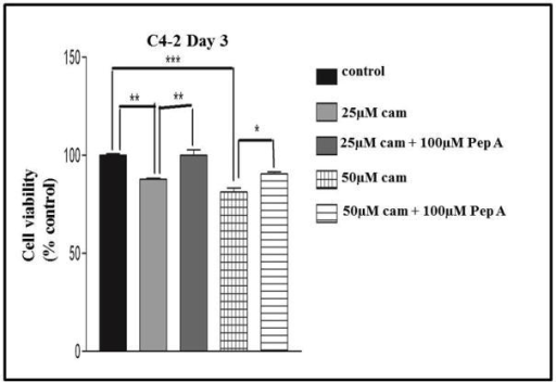 Pepstatin A abrogates the effects of camalexin-mediated decrease in cell viability and PARP cleavage. C4-2 cells were treated with 25 and 50 μM camalexin only, or 25 and 50 μM camalexin plus 100 μM Pep A for 3 days and cell viability assayed using the MTS proliferation assay (A). Western blot analysis was done to examine p53, CD and cleaved PARP protein expression in untreated, camalexin-treated and camalexin plus Pep A- treated C4-2 cells, along with the densitometry of protein expression (B). Treatment for 3 days indicated that Pep A could significantly inhibit camalexin-mediated decrease in cell viability and increase in Bax and cleaved PARP protein expression, but does not significantly alter p53 and CD protein expression. Statistical analysis was done using ANOVA and Tukey's Multiple Comparison as a Post Hoc Test. Values were expressed as mean ± S.E.M normalized to untreated controls, and 25 μM camalexin vs. 25 μM camalexin + 100 μM Pep A (* p < 0.05, ** p < 0.01). (N = 3). β-Actin was used as loading control and data are representative of at least three independent experiments.