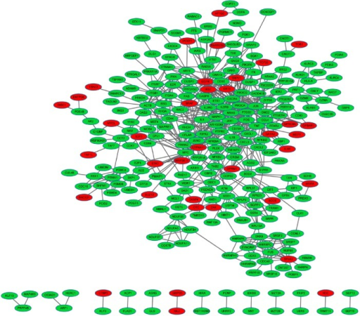 The constructed protein–protein interaction network of differentially expressed genes (DEGs).Notes: Red, up-regulated DEGs; green, down-regulated DEGs.