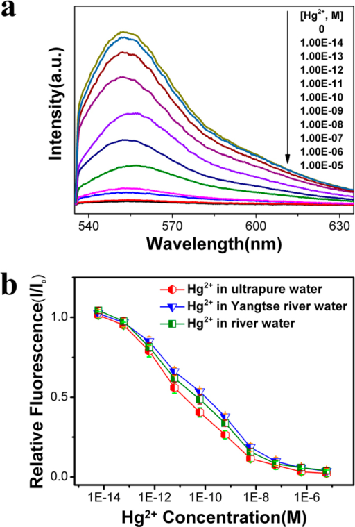 (a) Photoemission spectra of R6G/MPA-NPG in the presence of Hg2+ with different concentrations. (b) Normalized fluorescence intensity variation (I/I0) of R6G/MPA-NPG as a function of Hg2+ concentration in ultrapure water, Yangtse river water and a tributary of the Huangpu river water. I0 is the fluorescence intensity of R6G from the sensor in water only. Excitation wavelength is 532 nm.