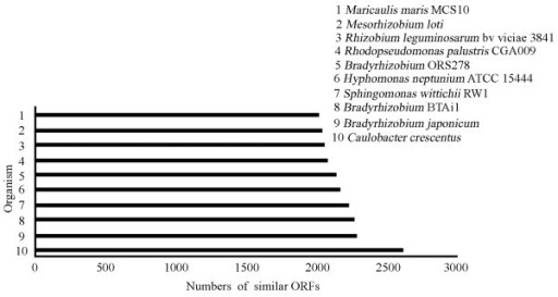 List of top 10 complete sequenced bacteria closest to P. zucineum. All 10 are alphaproteobacteria. Among all the sequenced bacterial genomes, C. crescentus shares the greatest number of similar ORFs with P. zucineum