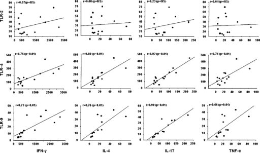 Correlations of TLR2, TLR4, TLR9, IFNγ, IL4, L17, and TNFα expressions in patients with DM and PM. The expression levels of TLR4 and TLR9 had significant positive correlations with those of IFNγ, IL4, IL17, and TNFα. The mRNA expressions were measured by real-time RT–PCR from muscle tissues of patients with DM and PM