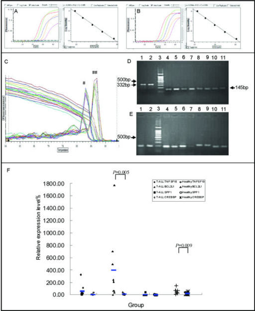 Features of the expression of TNFSF10, BCL2L1, SPP1, and CREBBP genes in T-ALL and healthy groups. A, B: Accurate standard curve graphs of BCL2L1 and the β2M control gene are shown using diluted Molt-4 cDNA as the template. The amplification efficiency of BCL2L1-related genes was more than 95%, and consistent with the high amplification efficiency of the β2M reference gene. C: Melting curves of the BCL2L1 and β2M genes from nine patients. #: Specific peak of the β2M reference gene begins at 81°C. ##: Specific peak of the BCL2L1 gene begins at 84°C. D: PCR products of the β2M gene by 2.5% agarose gel electrophoresis analysis. The size of the PCR products of the β2M gene used for the BCL11B reference is 332 bp (line 1, 2) and that used for the four genes of interest is 145 bp (line 4-11). Line 3: DNA ladder. E: PCR products analyzed by 2.5% agarose gel electrophoresis. Line 1-2: BCL11B (193bp), line 3: DNA ladder, line 4-5: BCL2L1 (202 bp), line 6-7: CREBBP (206 bp), line 8-9: SPP1 (241 bp), line 10-11: TNFSF10 (190 bp). F: Relative expression levels of the four genes of interest in T-ALL and healthy groups.