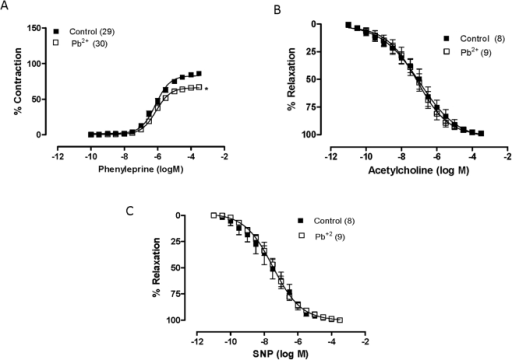 The effects of seven-day exposure to lead acetate on the concentration-response curves to phenylephrine (A), acetylcholine (B) and sodium nitroprusside (NSP; C) treatment in aortic rings.*P<0.05 by Student's t-test. Number of animals used is indicated in parentheses.
