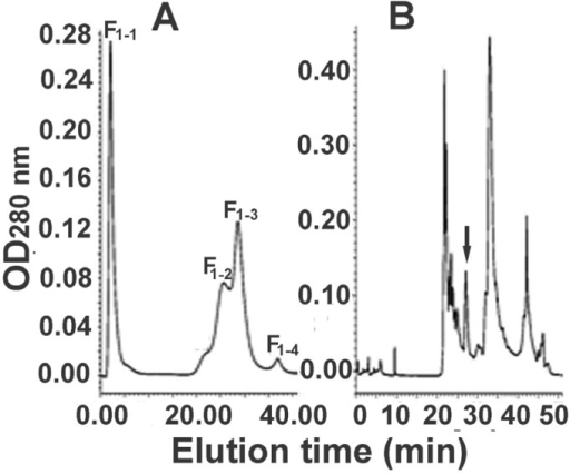 Further separation of the fraction F1 from molecular sieve chromatography. (A) Anion exchange chromatography of the fraction F1; F1 was the first fraction obtained from molecular sieve chromatography in Figure 1 and was further separated into four peaks, named F1-1 to F1-4; (B) RP-HPLC of the F1-3 from anion exchange chromatography of the fraction F1. The peak indicated with an arrow was Latroeggtoxin-III.