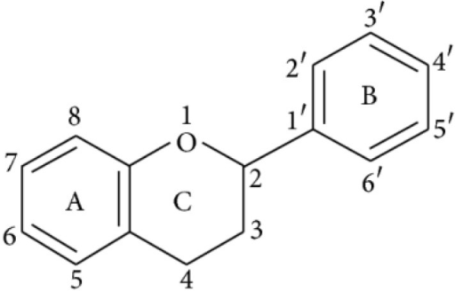 Basic structure of flavonoid.