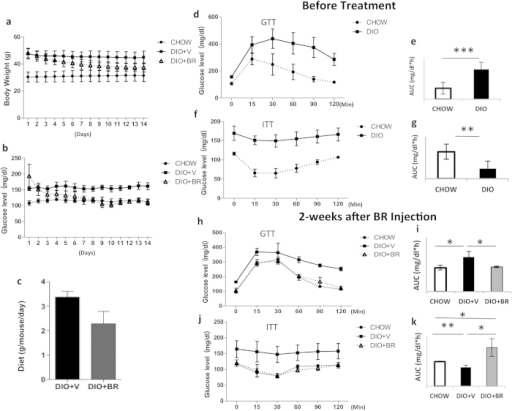 Administration of bilirubin reduces body weight and increases insulin sensitivity in DIO mice.(a) Changes in body weights of DIO mice treated with bilirubin (DIO + BR) or vehicle (DIO + V) compared to control mice fed standard diet (CHOW). (b) Daily non-fasting blood glucose levels in DIO + BR, DIO + V, and CHOW mice during bilirubin treatment. (c) Average food intake per mouse per 24-h period in DIO mice receiving BR or vehicle. (d) Intraperitoneal glucose tolerance test (GTT) of DIO mice and CHOW controls before bilirubin treatment; (e) area under the curve of GTT. (f) Insulin tolerance test (ITT) of DIO mice and CHOW mice before bilirubin treatment; (g) reverse area under the baseline above curve. (h) GTT of DIO + BR, DIO + V, and CHOW mice 14 days after the first bilirubin injection; (i) area under the curve. (j) ITT of DIO + BR, DIO + V, and CHOW mice at 14 days after the first bilirubin injection; (k) reverse area under the baseline above curve. At least 6-8 mice were included in each group; **p < 0.01, *p < 0.05, Student's t test. DIO + BR: DIO mice treated with bilirubin; DIO + V: DIO mice treated with vehicle; CHOW: mice fed standard diet.