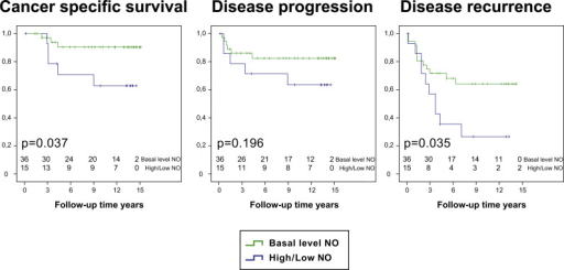 Difference in survival after BCG-treatment. Comparison within the group of the BCG-treated patients (n=51), between those with at least one of the NOS2(CCTTT)non-L-carrier, NOS3-rs2070744(TT) or rs1799983(GG) considered to yield basal levels of NO (i.e. neither increased NOS2 gene activity, nor decreased NOS3 gene activity) (n=36/51; 70.6%; Basal level NO), and those with the NOS2(CCTTT)L-carrier, NOS3- rs2070744(CT/CC) and rs1799983(GT/TT) genotypes, who in theory have increased NOS2 gene activity and decreased activity in the NOS3 gene (n=15/51; 29.4%; High/low NO). Patients still at risk are shown for each time point in the diagrams. (A) BCG-treated patients with basal level of NOS-gene activity showed a significantly better cancer specific survival (Log-rank test: p=0.037), than BCG-treated patients with increased NOS2 and decreased NOS3-gene activity. (B) The difference in risk of disease progression between the two groups of BCG-treated patients with and without basal level of NOS-gene activity was non-significant (Log-rank test: p=0.196). (C) BCG-treated patients with basal level of NOS-gene activity had a significantly lower risk of recurrence (Log-rank test: p=0.035), than BCG-treated patients with increased NOS2 and decreased NOS3-gene activity.